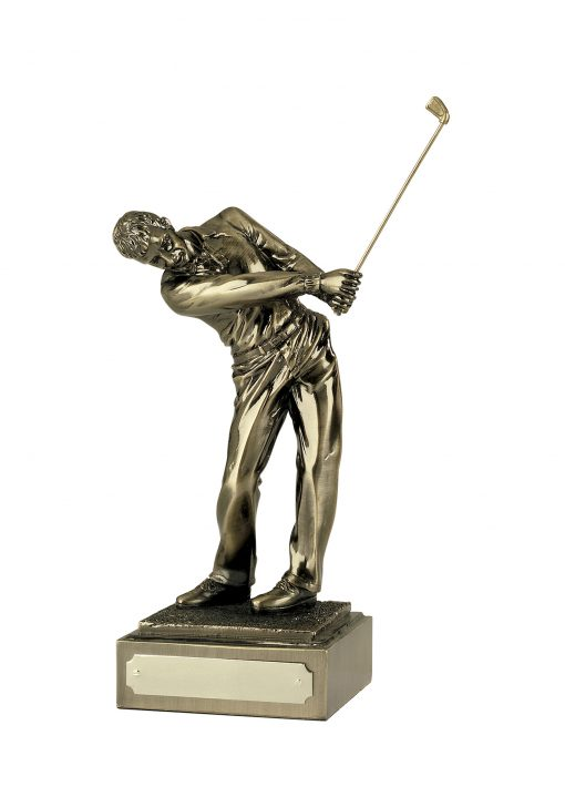 Follow Through Male Golf Swing Award
