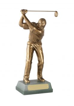 Full Swing Golfer Award