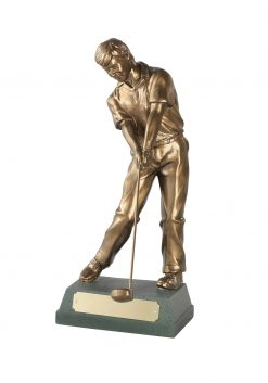 Through Swing Golf Award