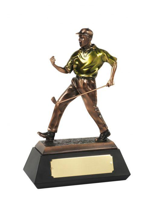 The match winner golfer award